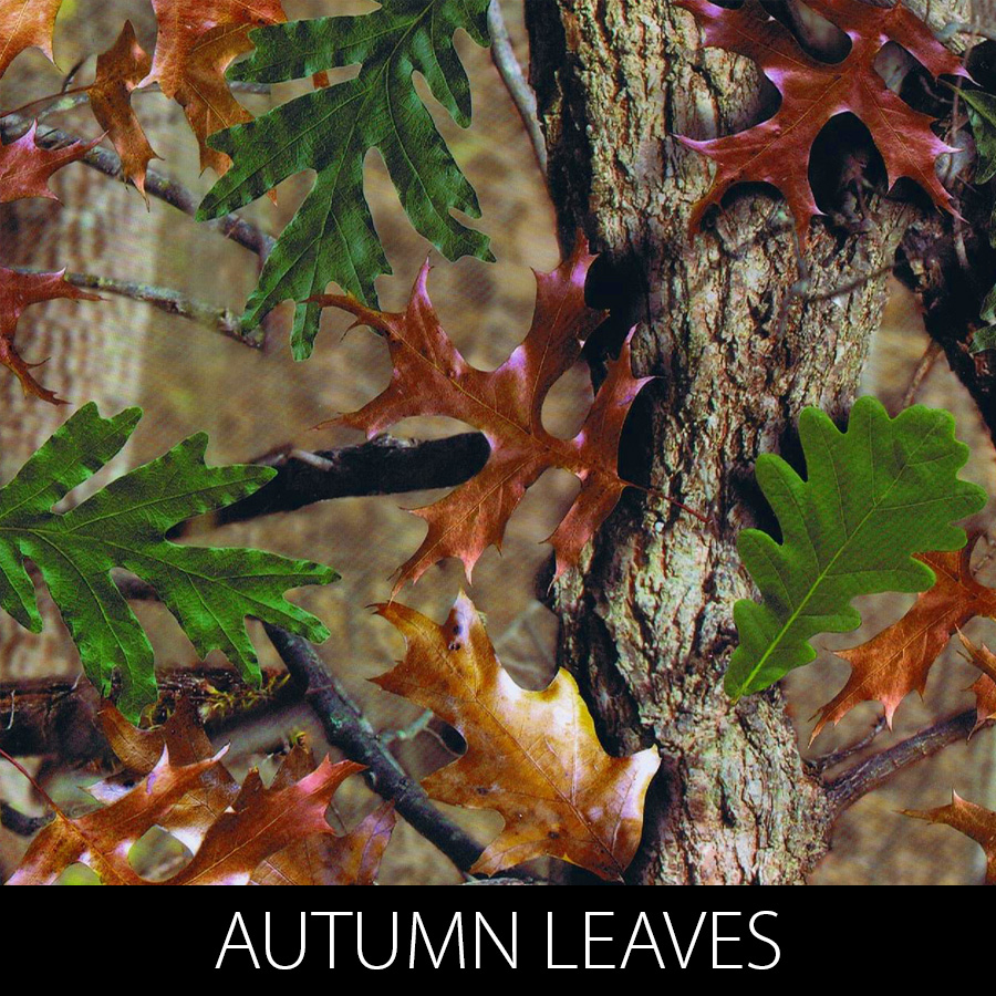 http://kidsgameon.com/wp-content/uploads/2016/10/AUTUMN-LEAVES.jpg