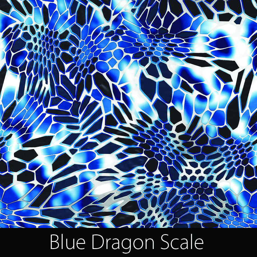 http://kidsgameon.com/wp-content/uploads/2016/10/Blue-Dragon-Scale.jpg