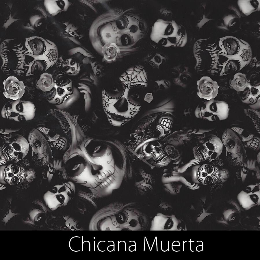 http://kidsgameon.com/wp-content/uploads/2016/10/Chicana-Muerta.jpg