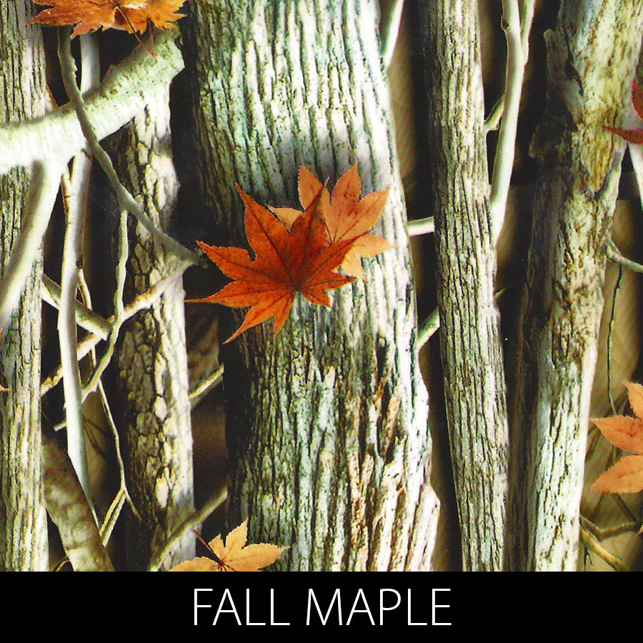 http://kidsgameon.com/wp-content/uploads/2016/10/FALL-MAPLE.jpg