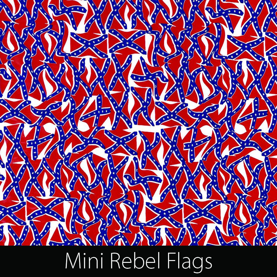 http://kidsgameon.com/wp-content/uploads/2016/10/Mini-Rebel-Flags.jpg