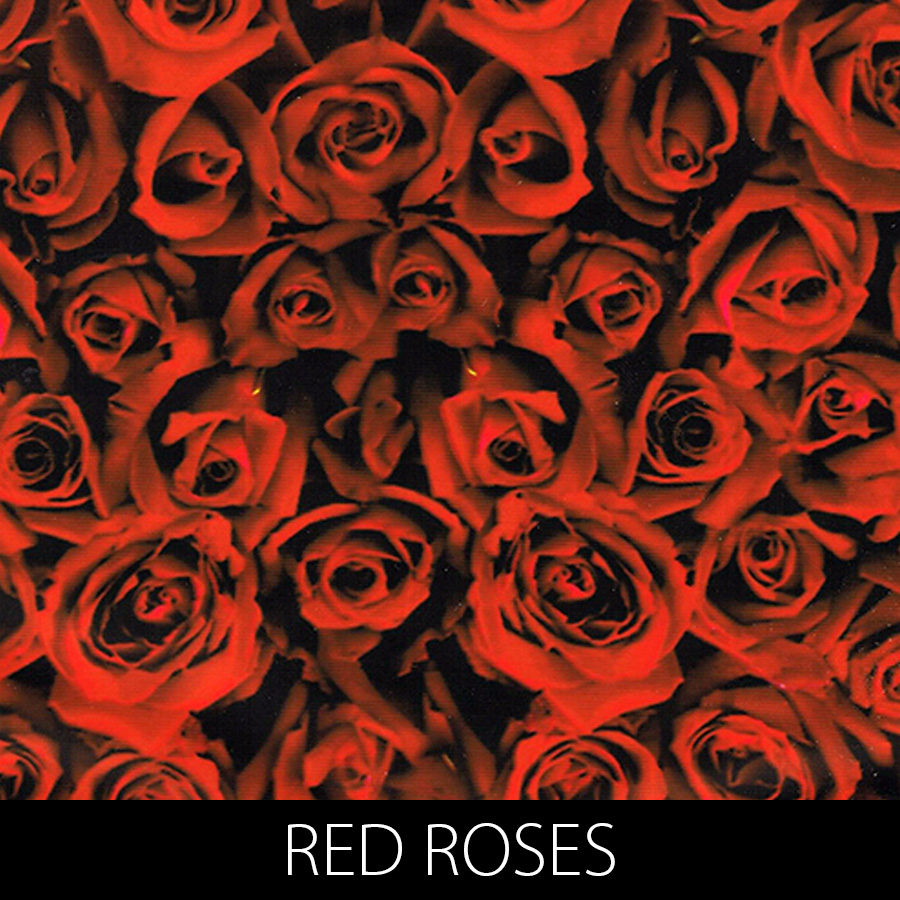 http://kidsgameon.com/wp-content/uploads/2016/10/RED-ROSES.jpg