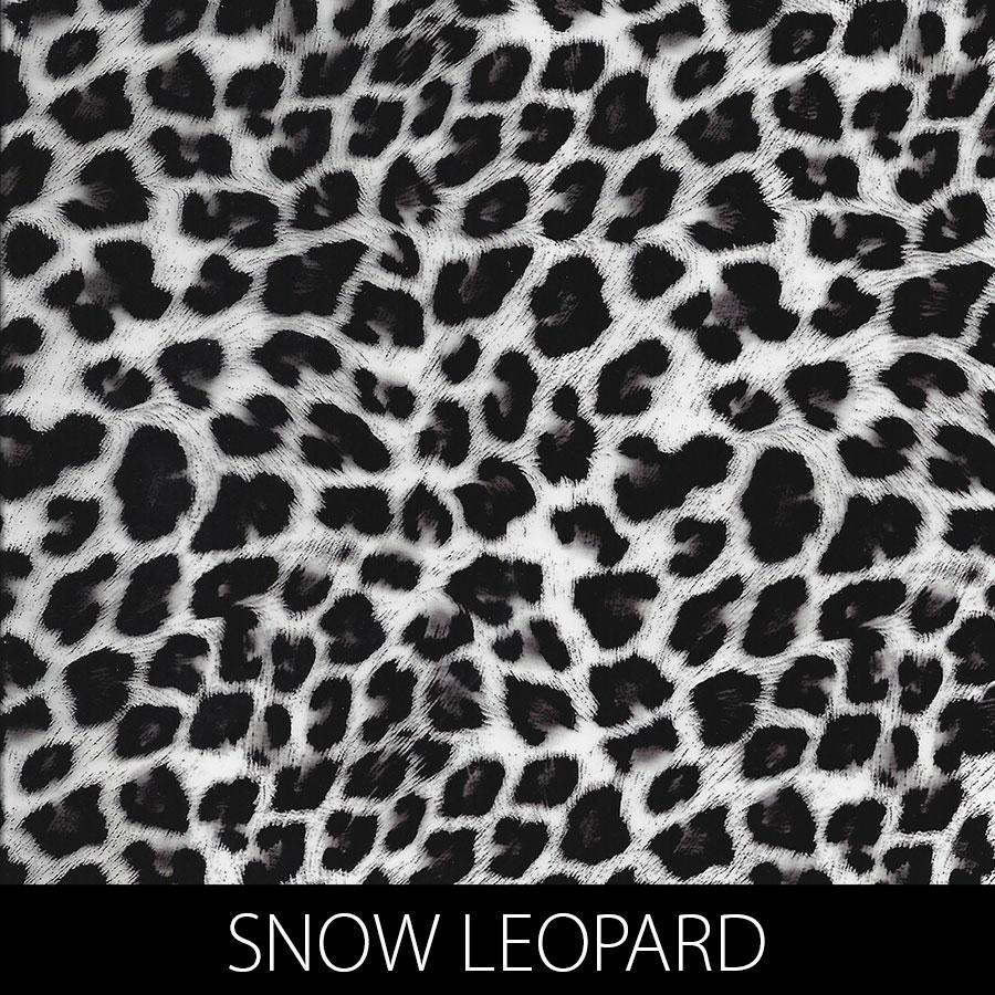 http://kidsgameon.com/wp-content/uploads/2016/10/SNOW-LEOPARD.jpg