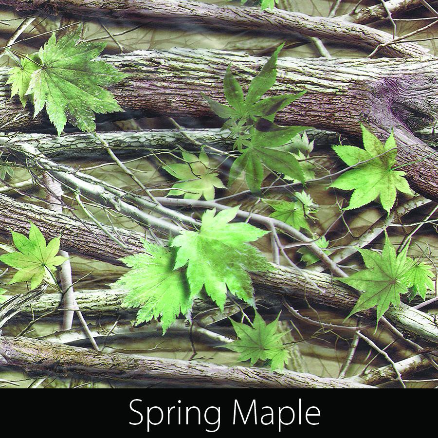 http://kidsgameon.com/wp-content/uploads/2016/10/Spring-Maple.jpg