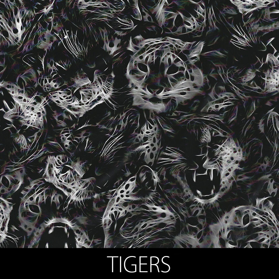 http://kidsgameon.com/wp-content/uploads/2016/10/TIGERS.jpg