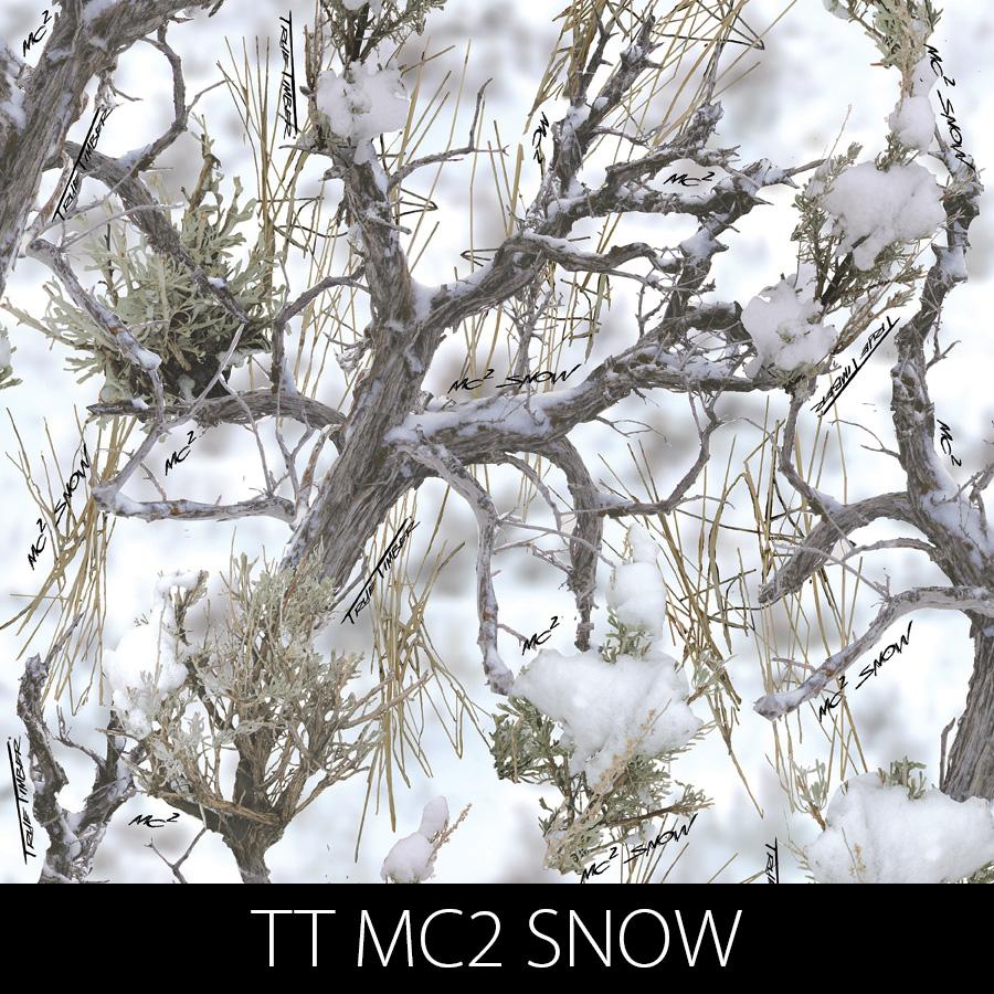 http://kidsgameon.com/wp-content/uploads/2016/10/TT-MC2-SNOW.jpg
