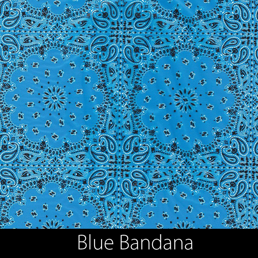 http://kidsgameon.com/wp-content/uploads/2016/10/bluebandana.jpg